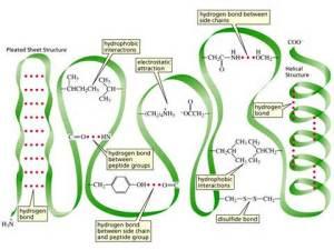 Plant physiology: brilliant