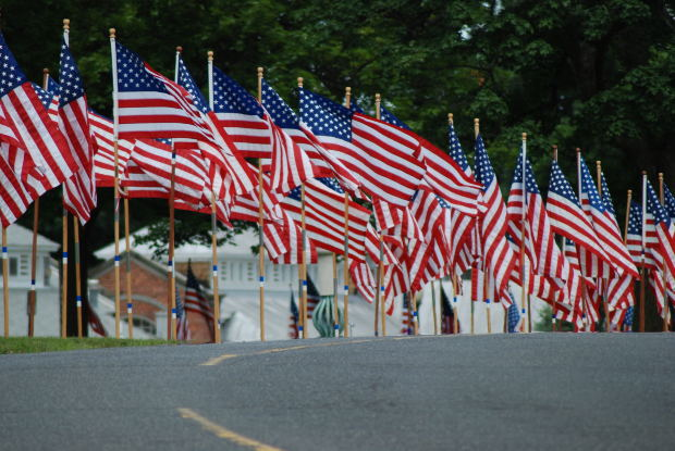 American-flags-lots-of-them